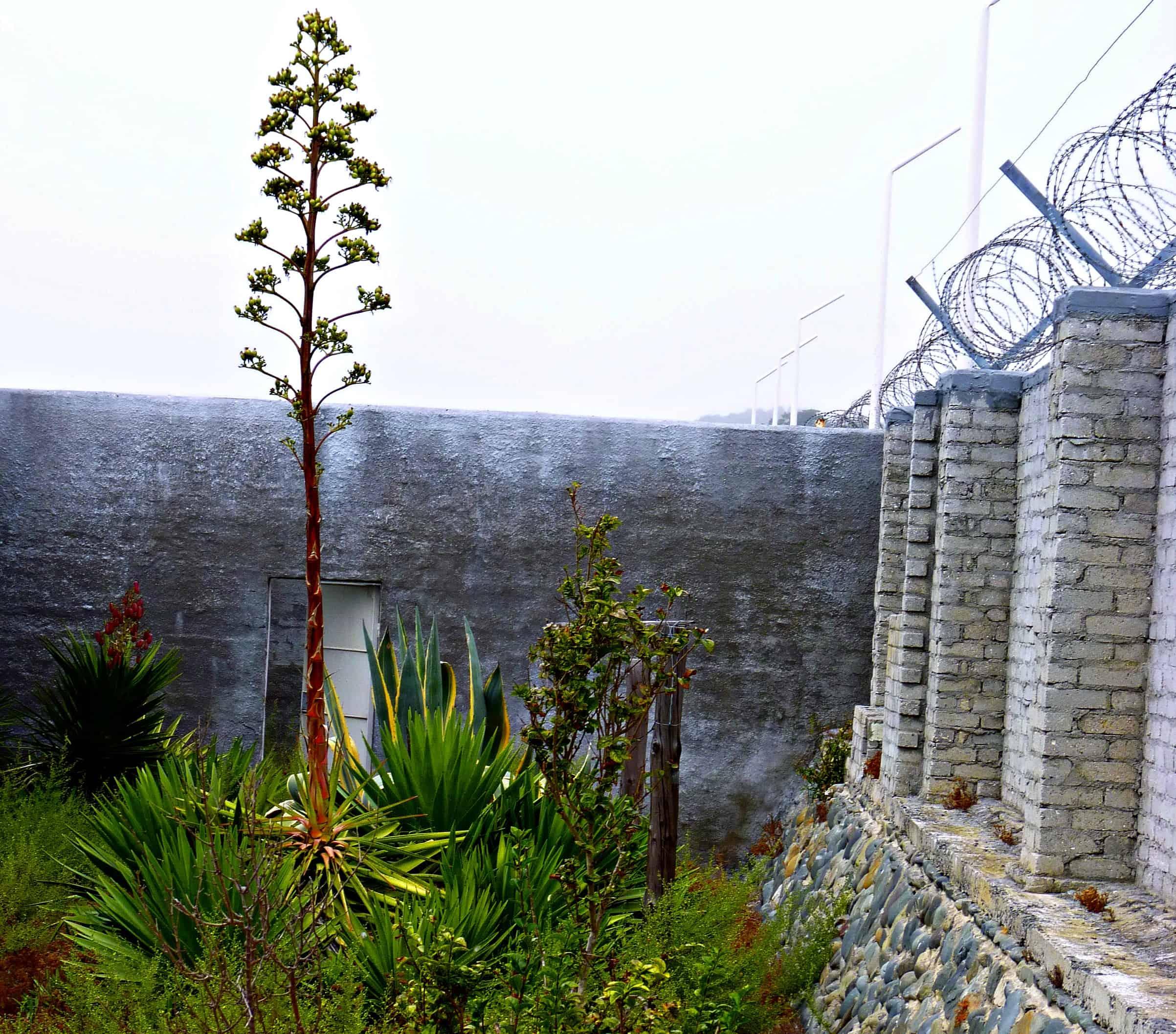 Robben Island Prison Garden