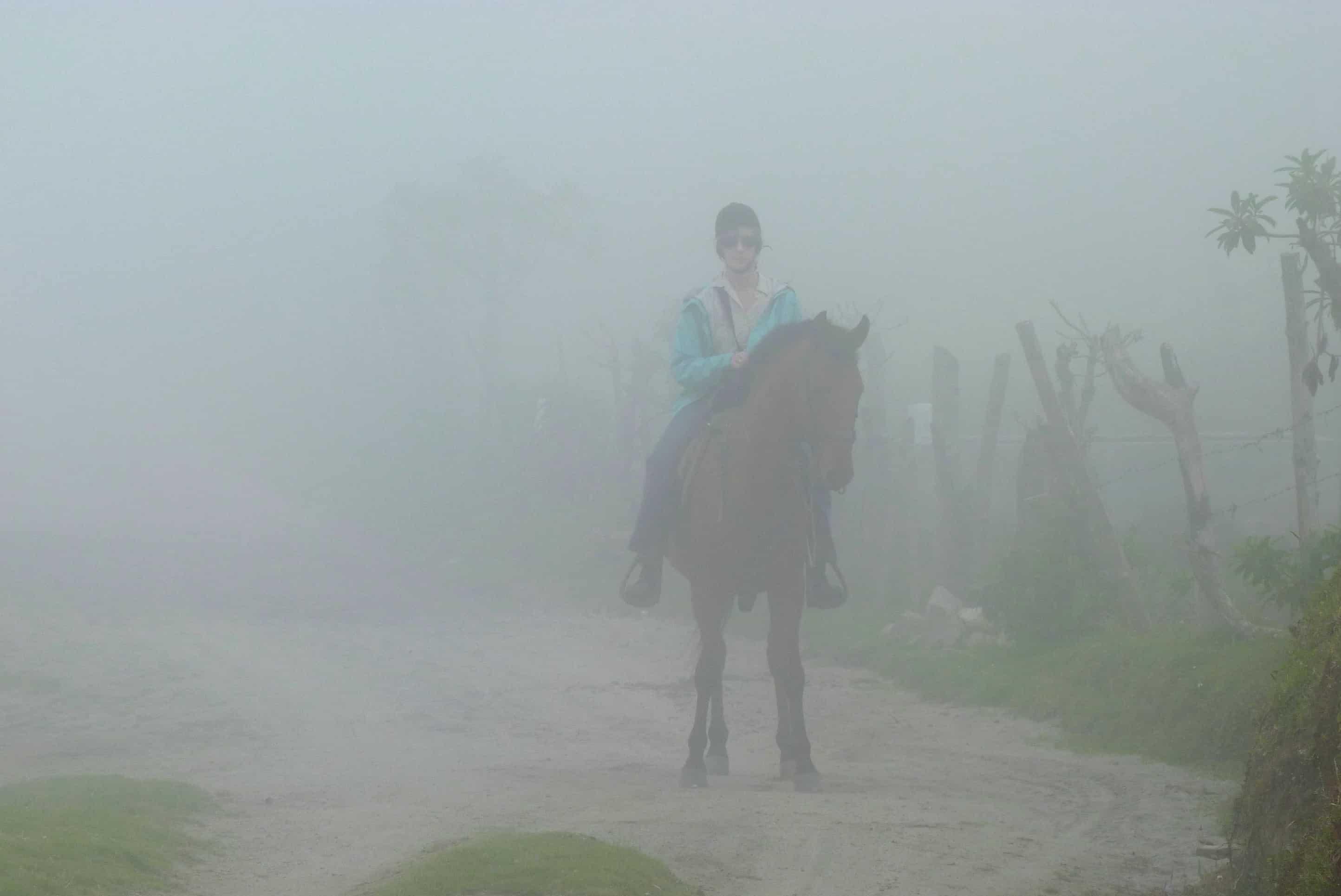Nono Cloudforest, Ecuador