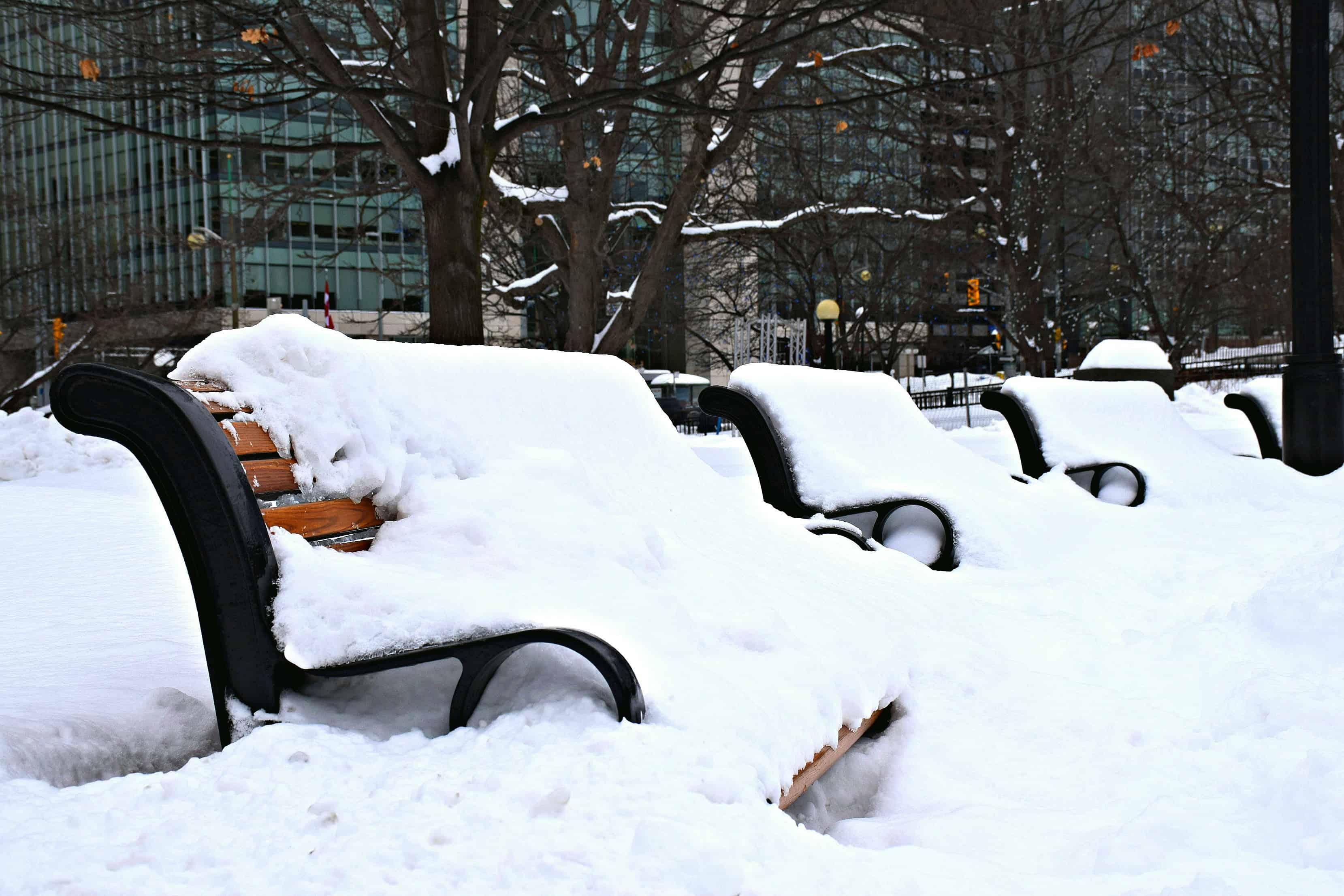 Confederation Park, Ottawa Snowstorm 2016