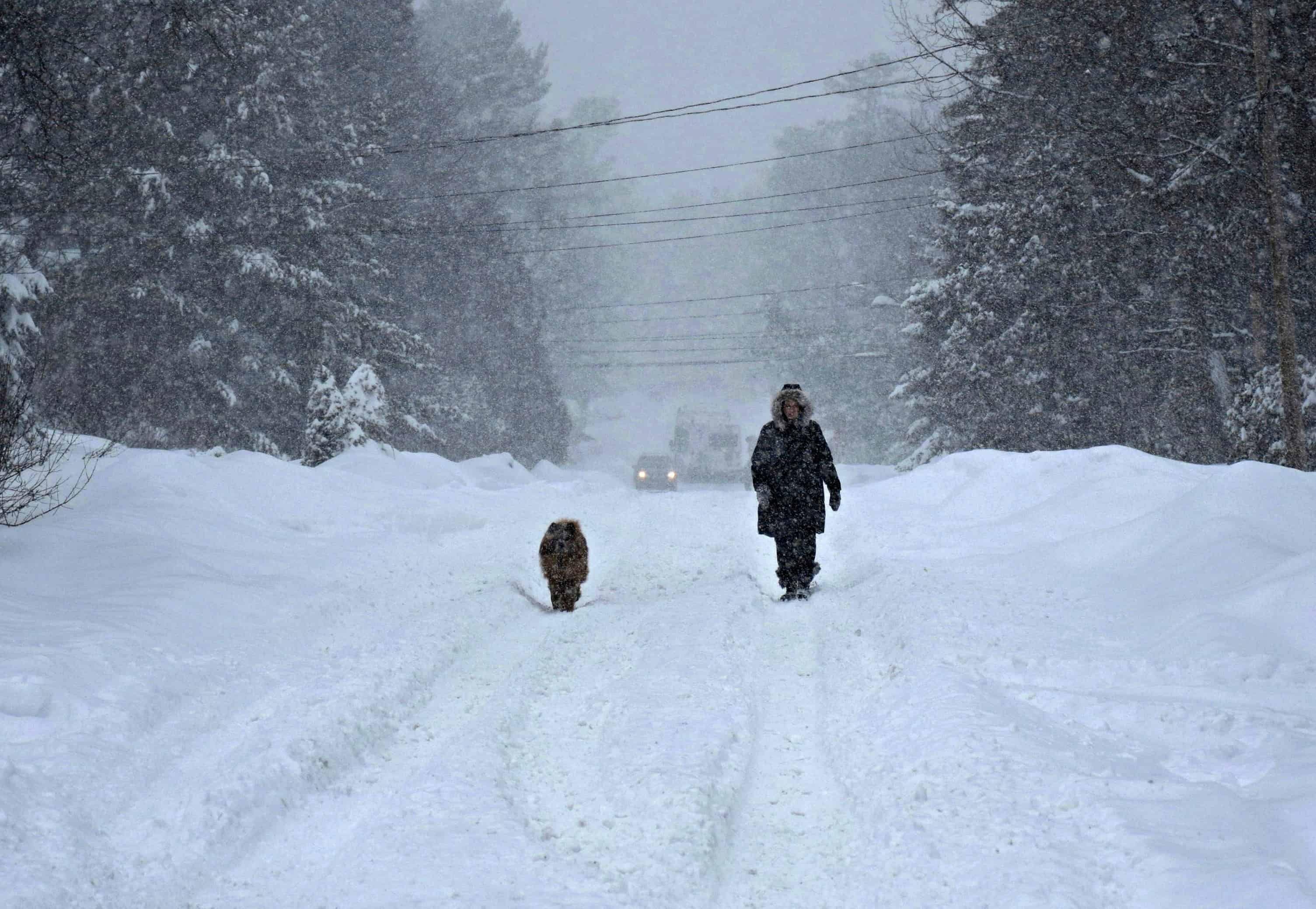 Ottawa Snowstorm 2016