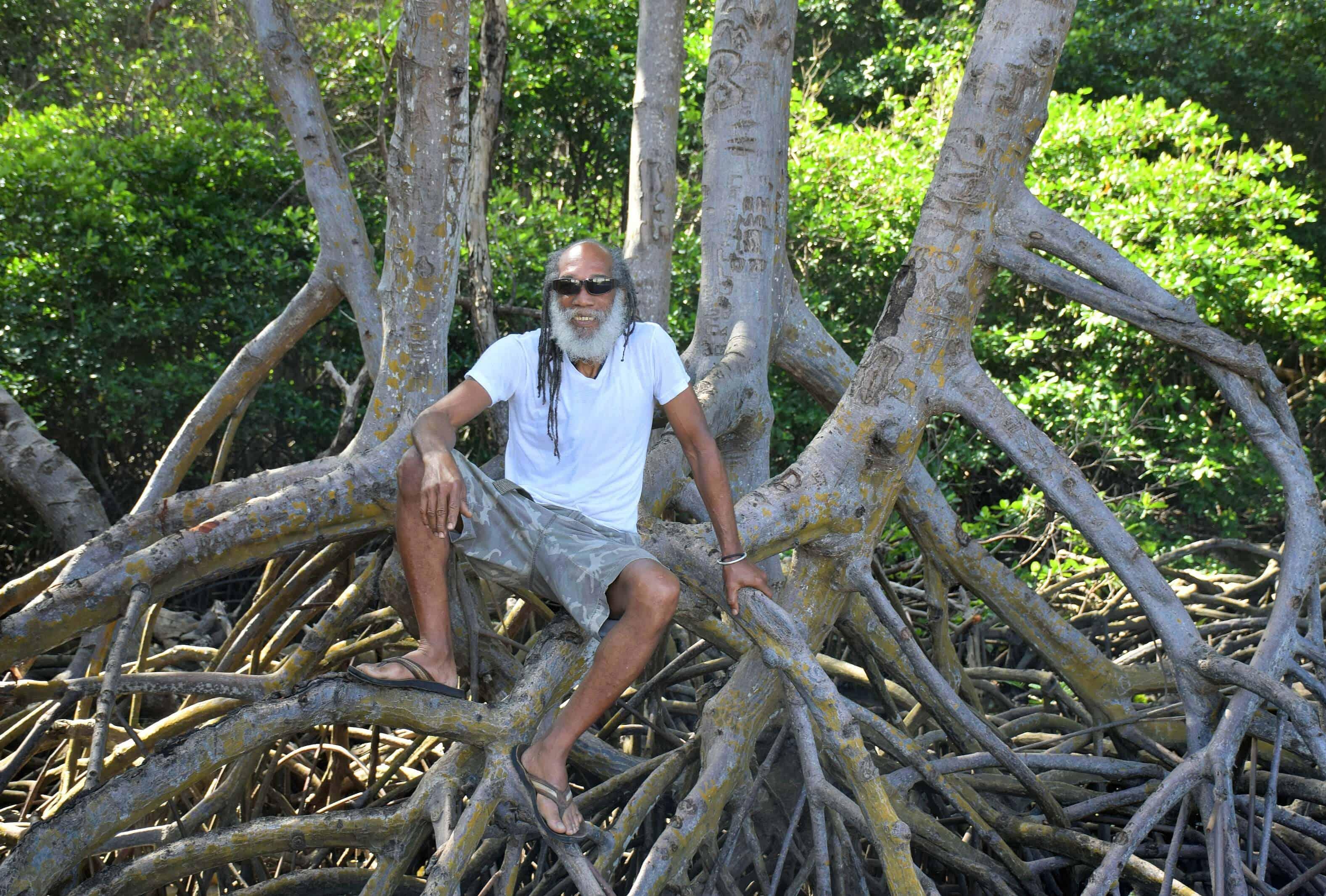 Nariva River Mangrove, Trinidad