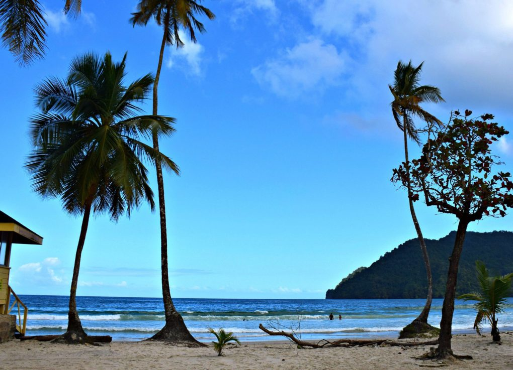 8 PHOTOS THAT WILL MAKE YOU WANT TO TOUR TRINIDAD'S NORTH COAST