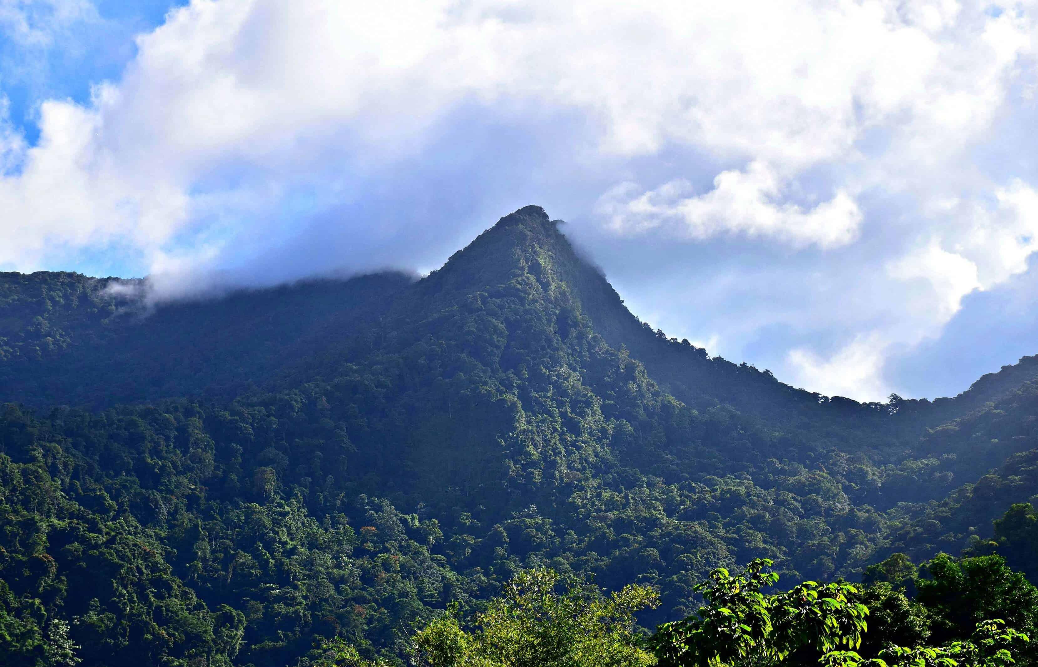 Northern Range, Trinidad