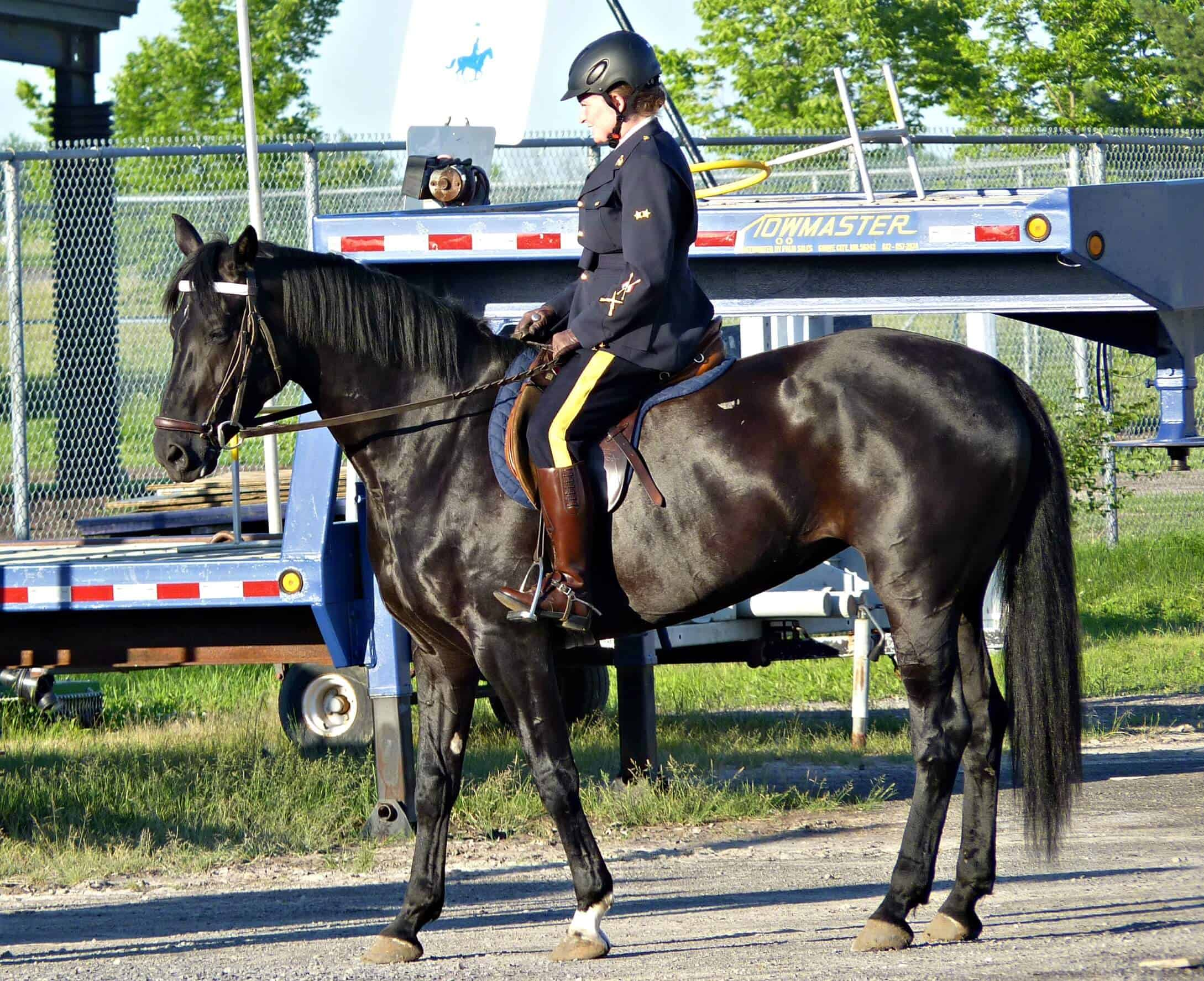 my dream to join canadas rcmp musical ride travel bliss now