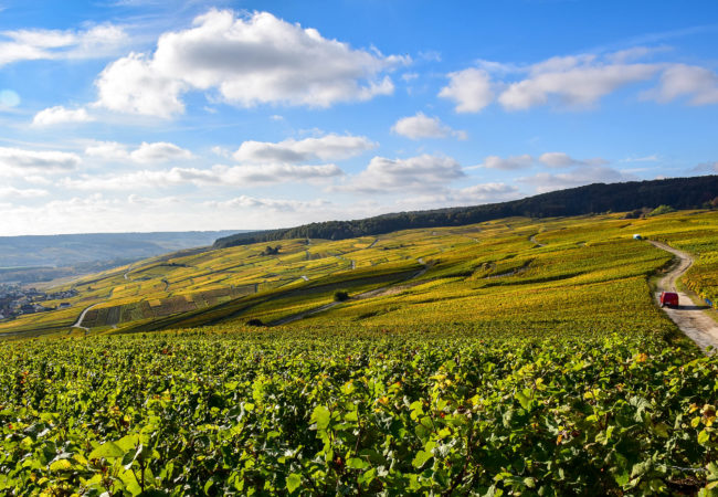 UNCORK THE BUBBLY:  THE PERFECT WAY TO VISIT CHAMPAGNE, FRANCE